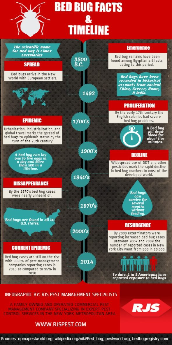 Infographic: Bedbug Facts and Timeline