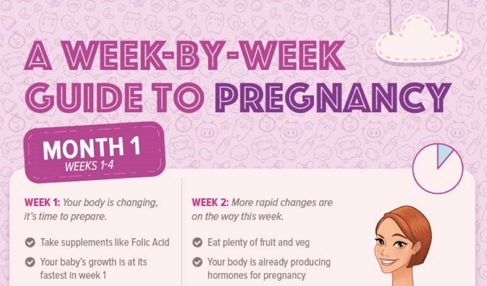 pregnancy guide a week by week journey for every mom to be rh infographicsarchive com pregnancy guide week by week pictures pregnancy guide week 5